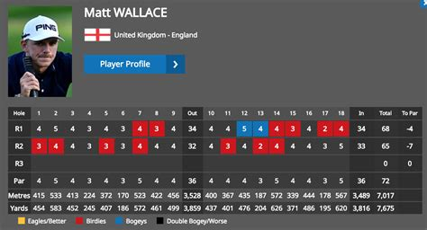 Wallace rides lowered expectations to top of Race to Dubai