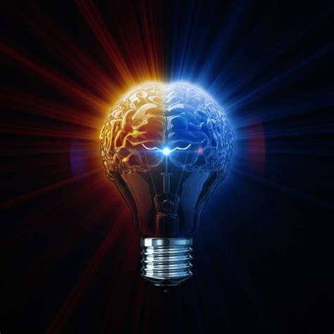 Brain work - All In The Mind - ABC Radio National