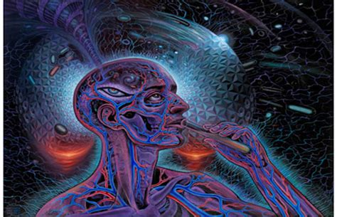 Pineal Gland – A Portal To Higher Dimensions - Spiritual