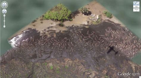 28 Crazy Things You Can Find On Google Earth